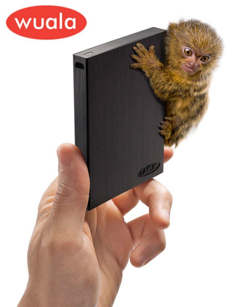 LaCie Rikiki 250 GB