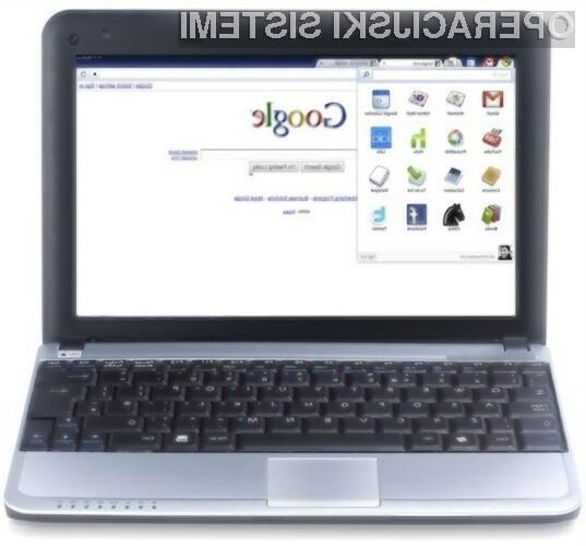 Google je komercialno različico operacijskega sistema Chrome OS odložil na leto 2011, vendar se bo še letos pojavil Googlov netbook  z beta različico tega sistema.