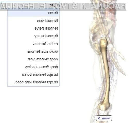 Spletna storitev Google Body Browser je kot nalašč za študente medicine.