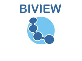 BIView  - rešitev za potrebe poslovnega obveščanja