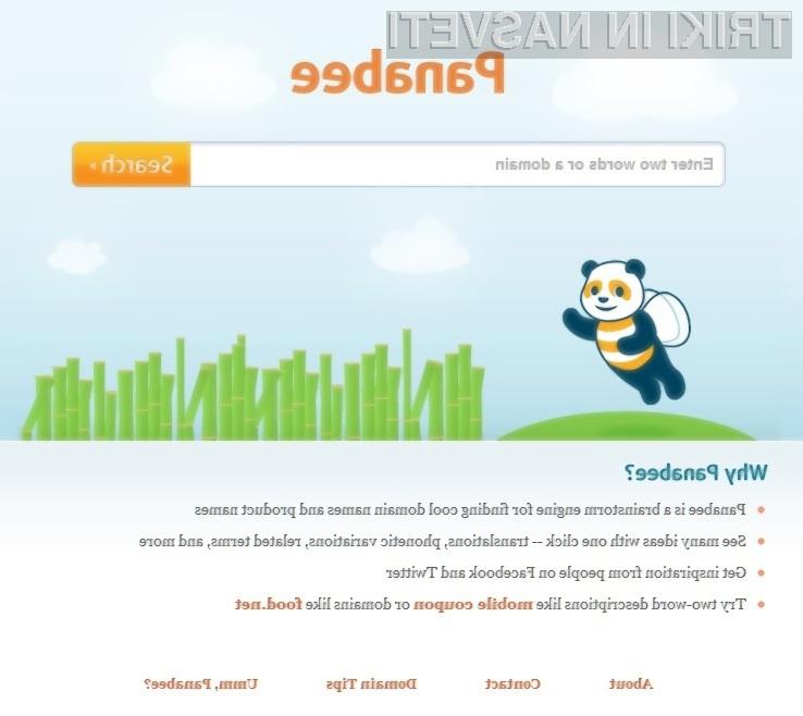 Storitev Panabee nam lahko odločilno pomaga pri izbiri pravega imena domene.