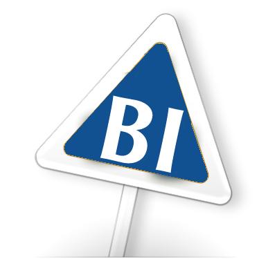 Pronet BI3 - Poslovna inteligenca