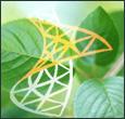 Implementacije in svetovanje s področja korporativnih portalov