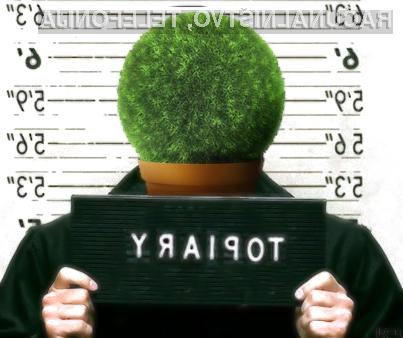 Britanska policija je aretirala enega od vodilnih ljudi hekerskih združb, poznanega pod vzdevkom Topiary.