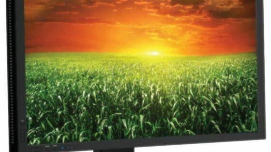 NEC bo s tem monitorjem kupcem ponudil dobro alternativo nekaterim popularnim monitorjem podjetij HP in Dell.