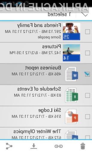 Aplikacija SkyDrive bolj kot ne omogoča vse, kar se od nje tudi pričakuje.