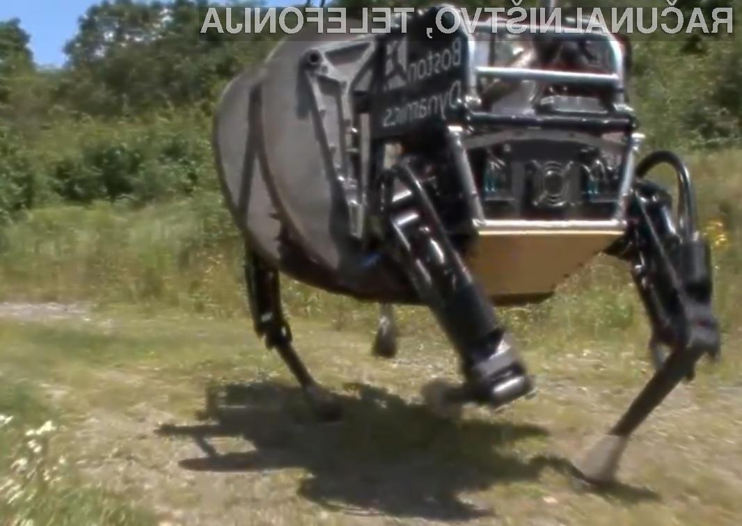 Mali oglasi konji prodaja konja health