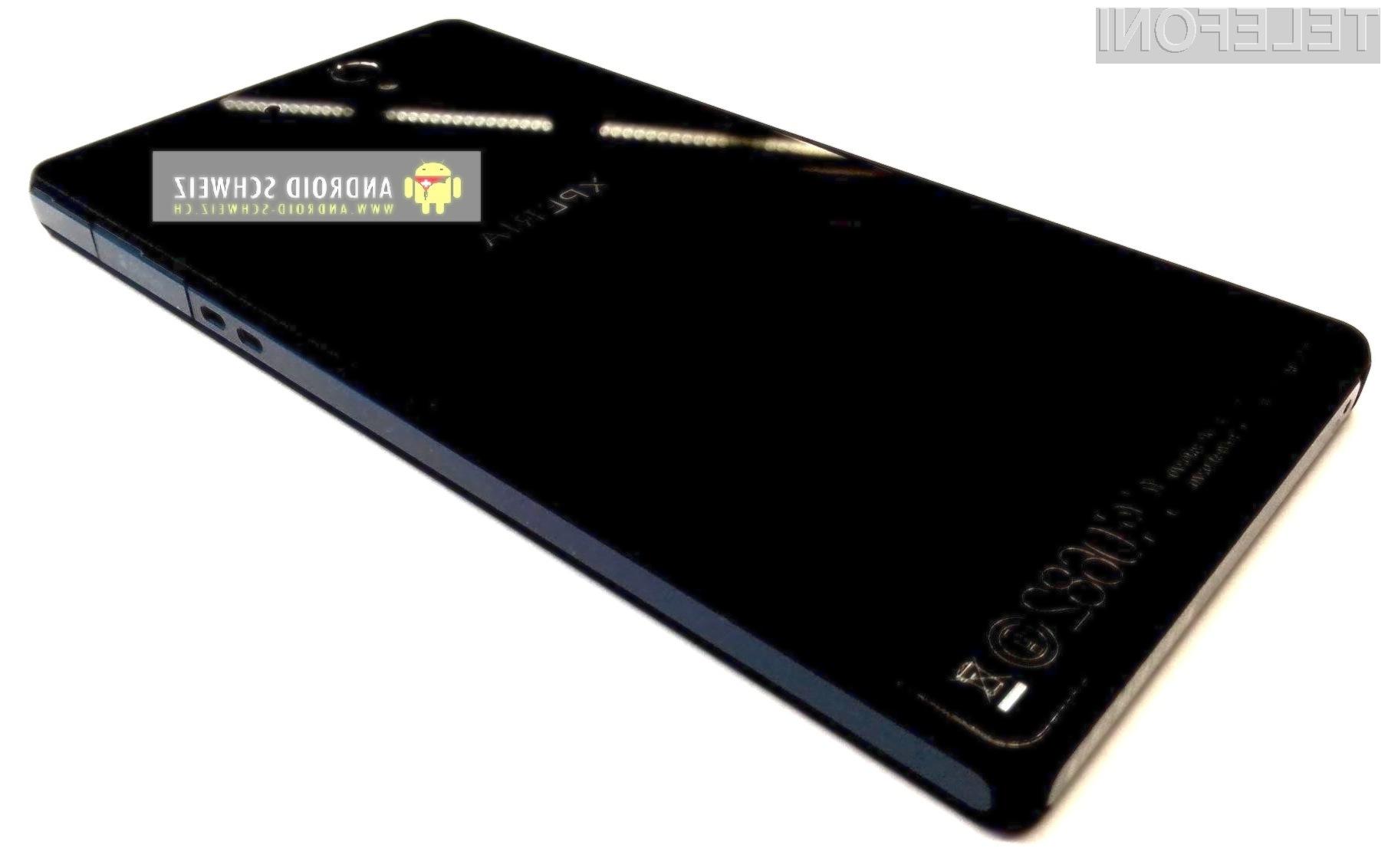 Sony ericsson c6603 3