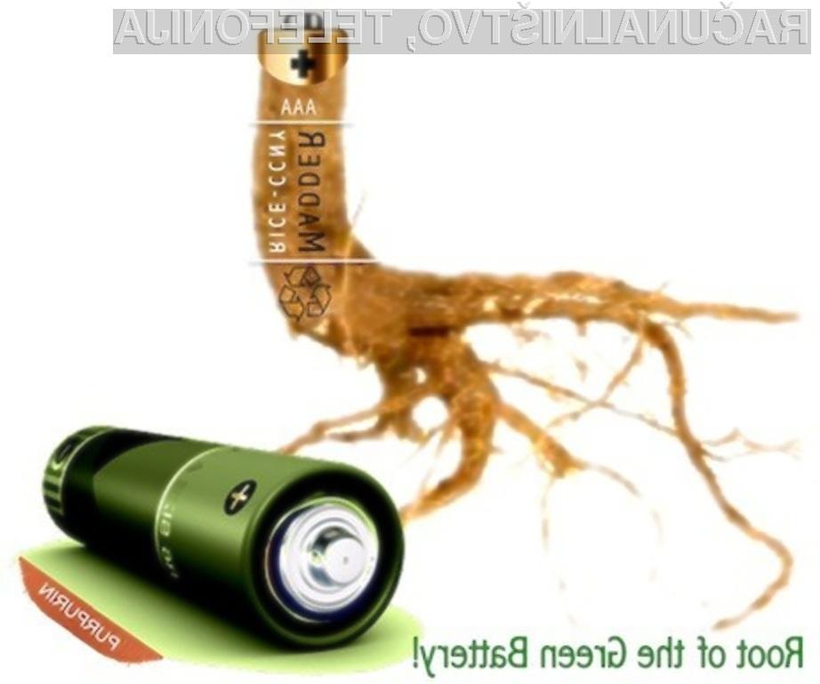 Prve ekološke baterije naj bi bile naprodaj šele čez nekaj let.