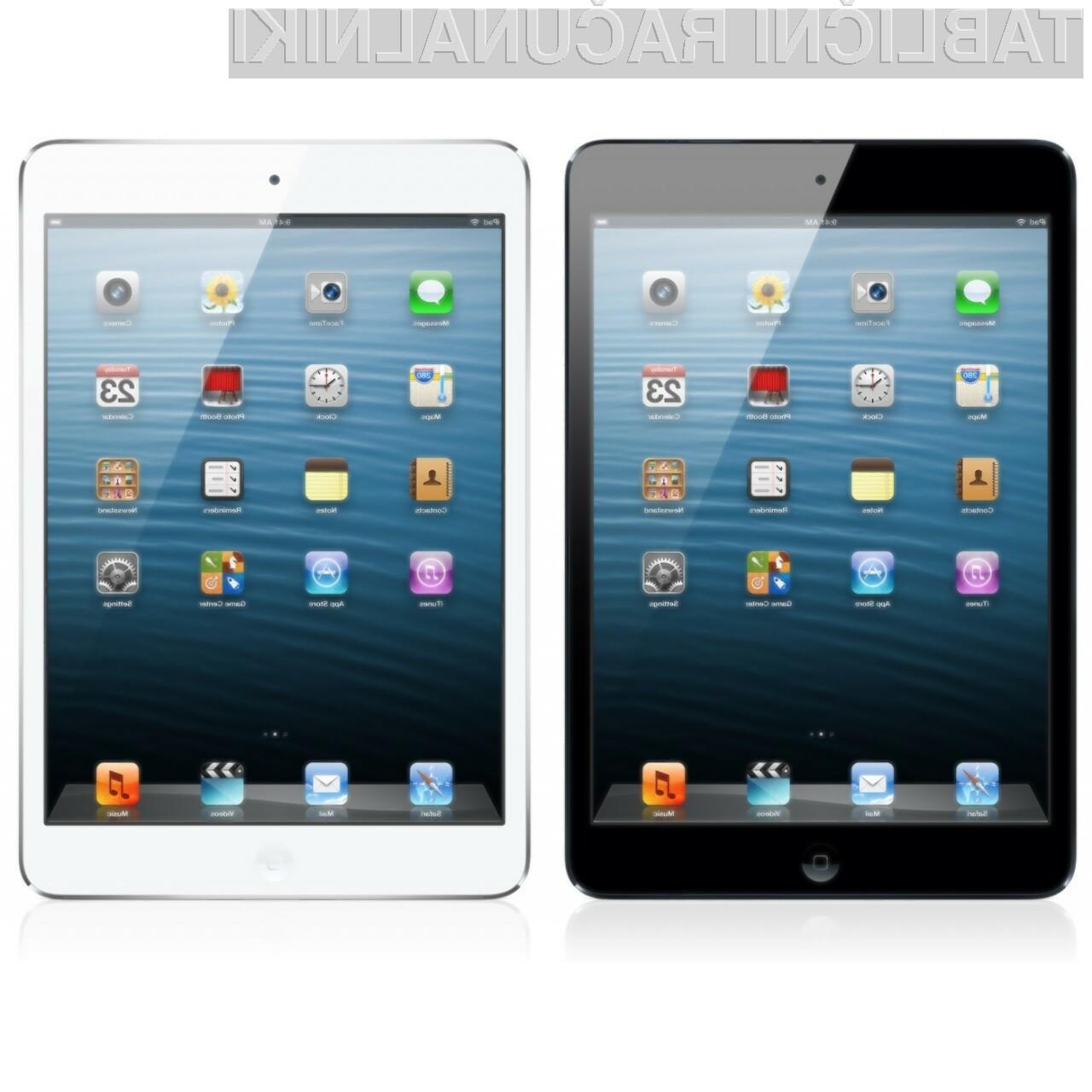 iPad mini je primeren za nekoliko manj zahtevne kupce.