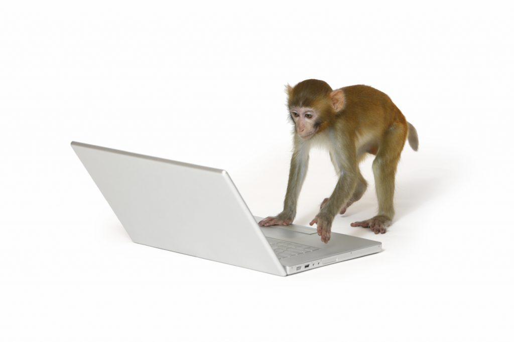 Kaj imajo skupnega opica, banana in programer?