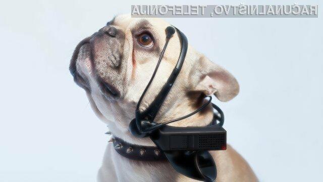 Pasji prevajalnik »No More Woof« bo poskrbel za prevod enostavnejših pasjih govoric, kot so npr. »Lačen sem.«, »Utrujen sem.« in »Želim na sprehod.«.
