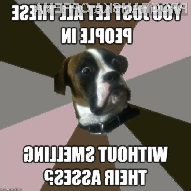 Ljudi bomo lahko kmalu identificirali po vonju.