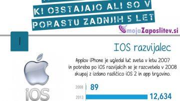 Razvijalec operacijskega sistema iOS
