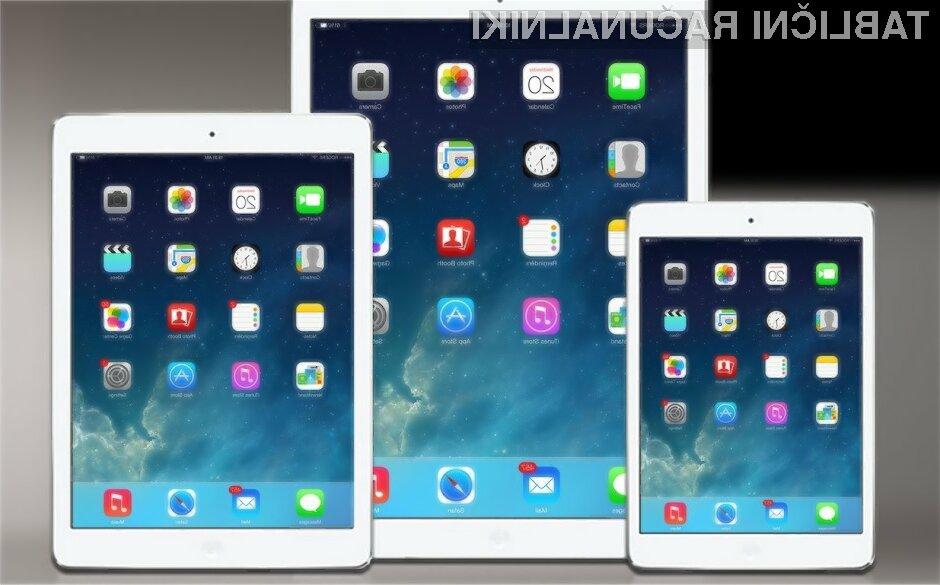 Večja tablica Apple iPad naj bi luč sveta ugledala najkasneje do konca naslednje pomladi.