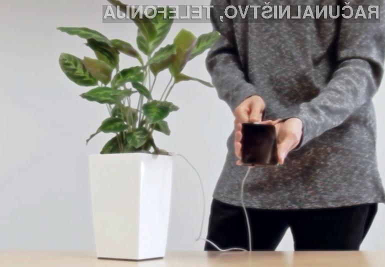 Polnjenje mobilnega telefona z energijo rastlin!