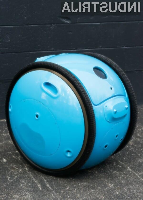 Robot Gita - človekov najboljši prijatelj