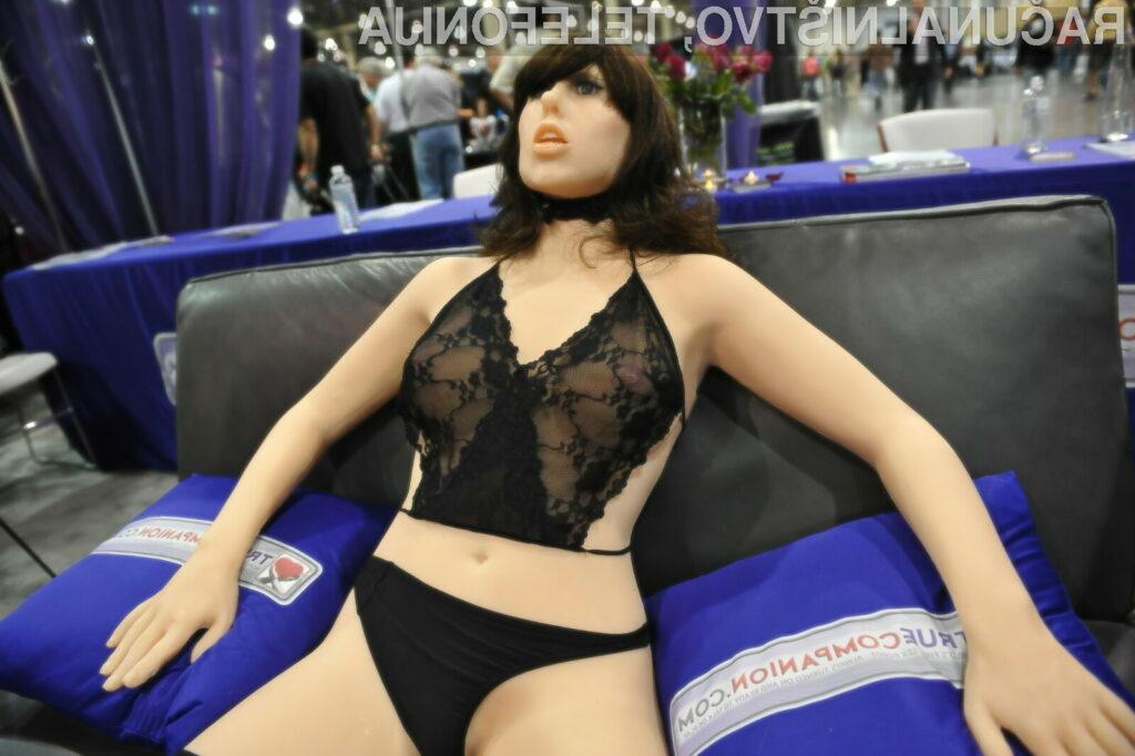 Bi roboti za seks lahko ogrozili življenje svojih lastnikov?