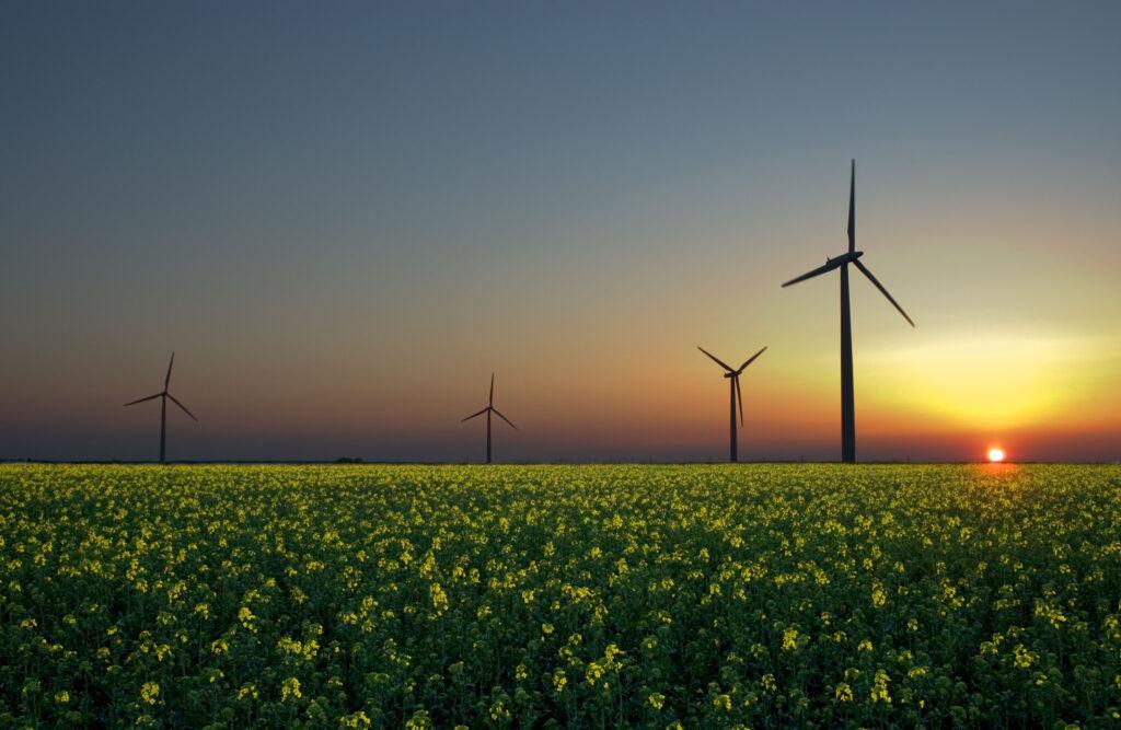 """Svet mora nujno """"preklopiti"""" na obnovljive vire energije"""