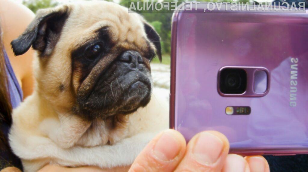 Od pametnega mobilnega telefona Samsung Galaxy S10 si lahko obetamo veliko!