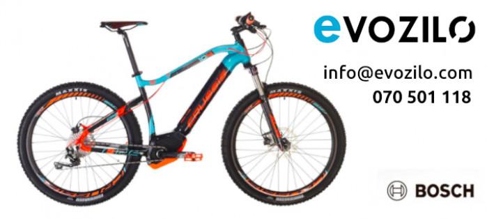 Kakšno električno kolo kupiti?