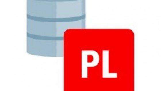 Spoznaj programski jezik PL/SQL