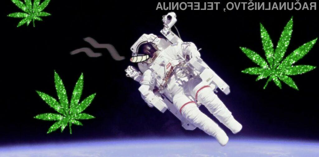 Elon Musk in SpaceX: z marihuano v vesolje