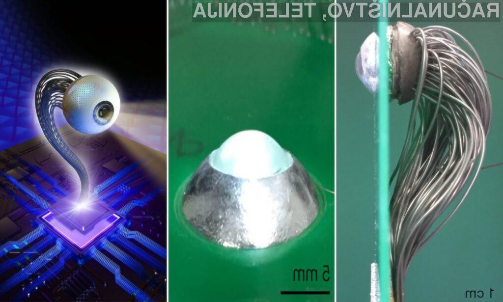 Prvo 3D bionično oko, ki bi lahko slepim povrnilo vid