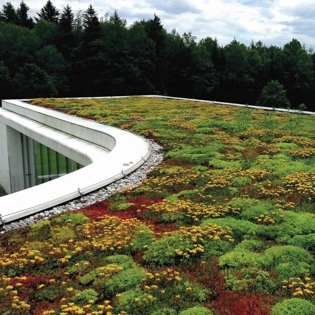 Z zeleno ravno streho bo vaš dom pameten tudi navzven