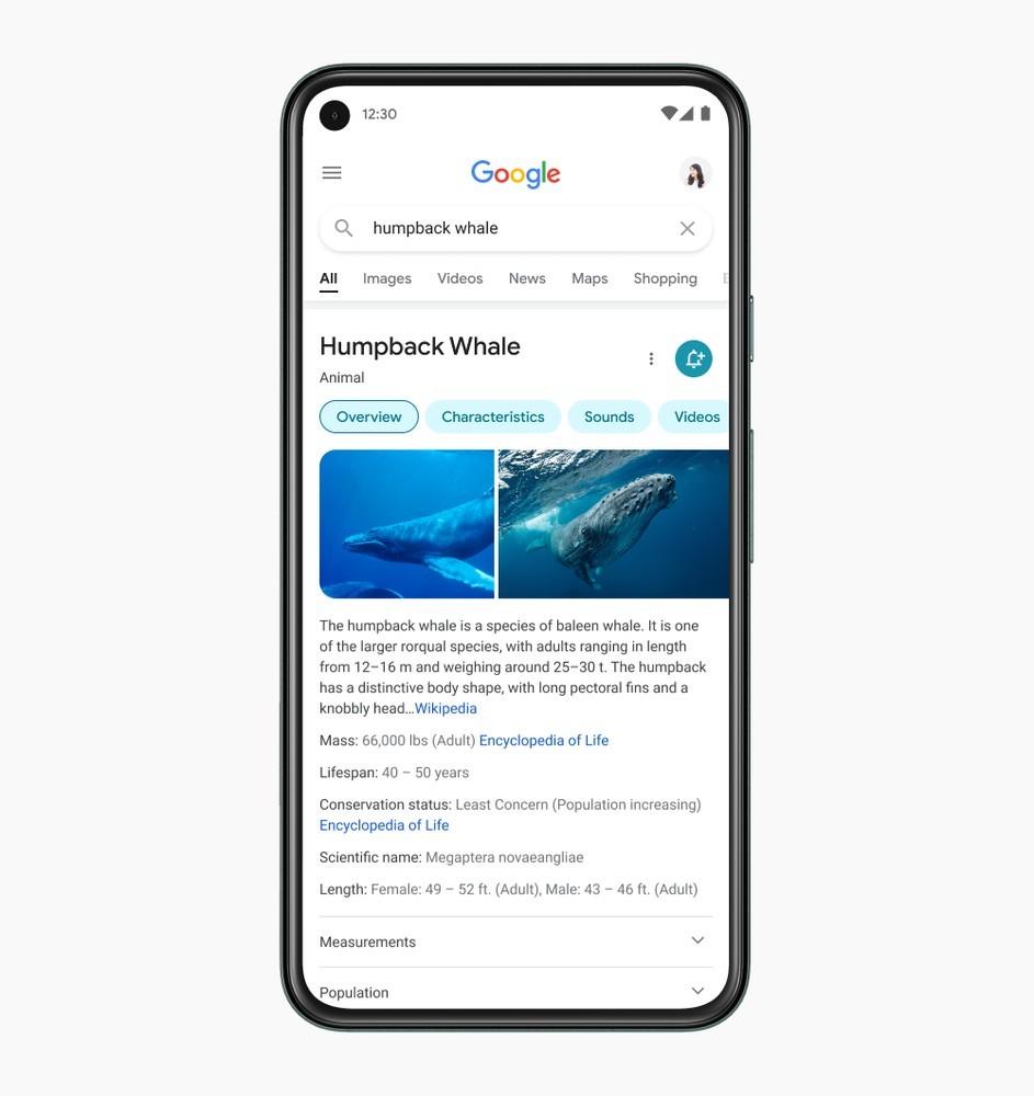 Novi spletni iskalnik Google za mobilne naprave znatno poenostavlja iskanje vsebin na spletu.