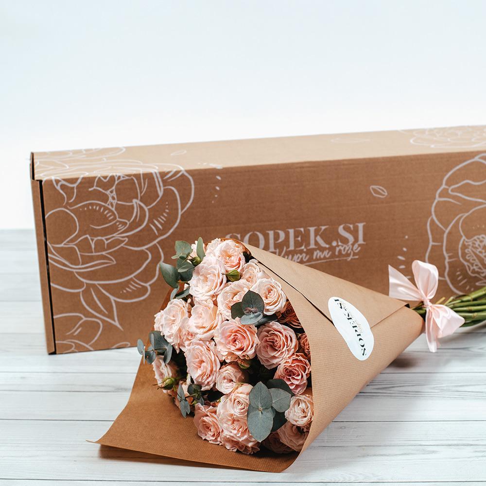 sopek-mnogocvetne-vrtnice-eukaliptos-4.jpg