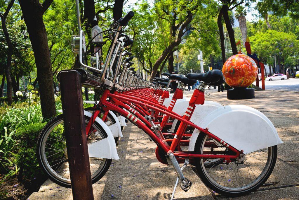 Prav poseben poudarek bo na uporabi koles.