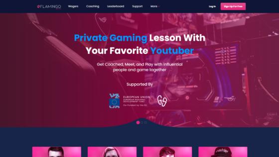eFlamingo Coaching vam predstavlja edinstveno priložnost, da se povežete s svojimi računalniškimi idoli in se naučite novih dragocenih veščin.