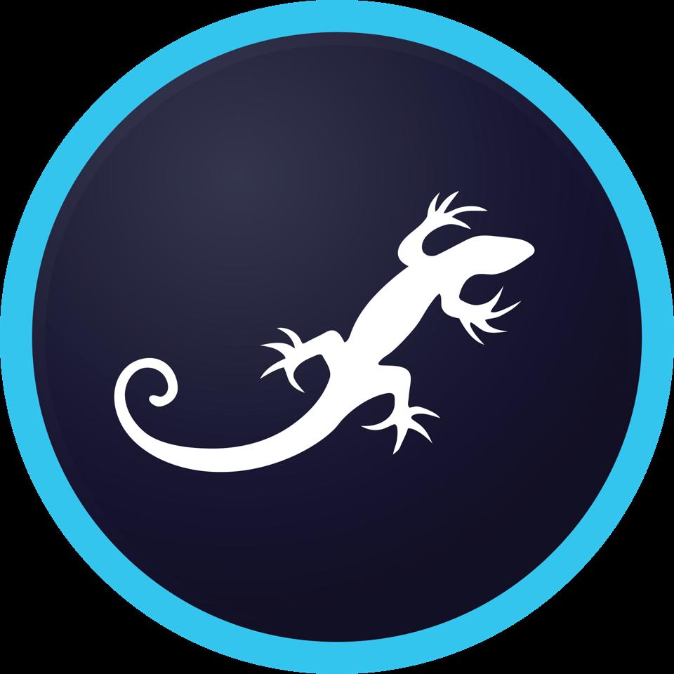 rsteam-logotip