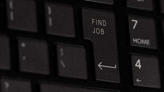 Informacijski sektor še naprej potrebuje izkušene tehnične kadre. Najbolj iskani poklici so inženirji, razvijalci, programerji in strokovnjaki različnih področij.
