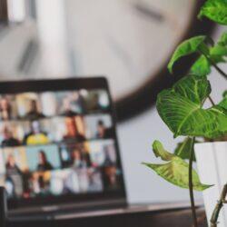 Spletno učenje v izobraževalni ustanovi Housing poteka preko webinarjev, ki večinoma potekajo v živo, kar omogoča dvosmerno interakcijo predavatelja in udeležencev.